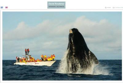 20130920041501-danielrivademar-ballena-saltando.png