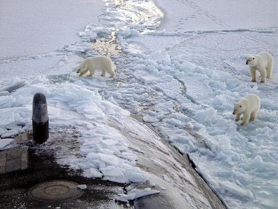 Libertad para el Arctic Sunrise YA